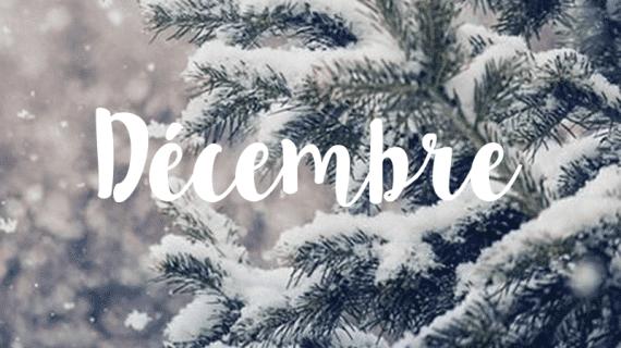 La Symbolique de Noël en Chamanisme